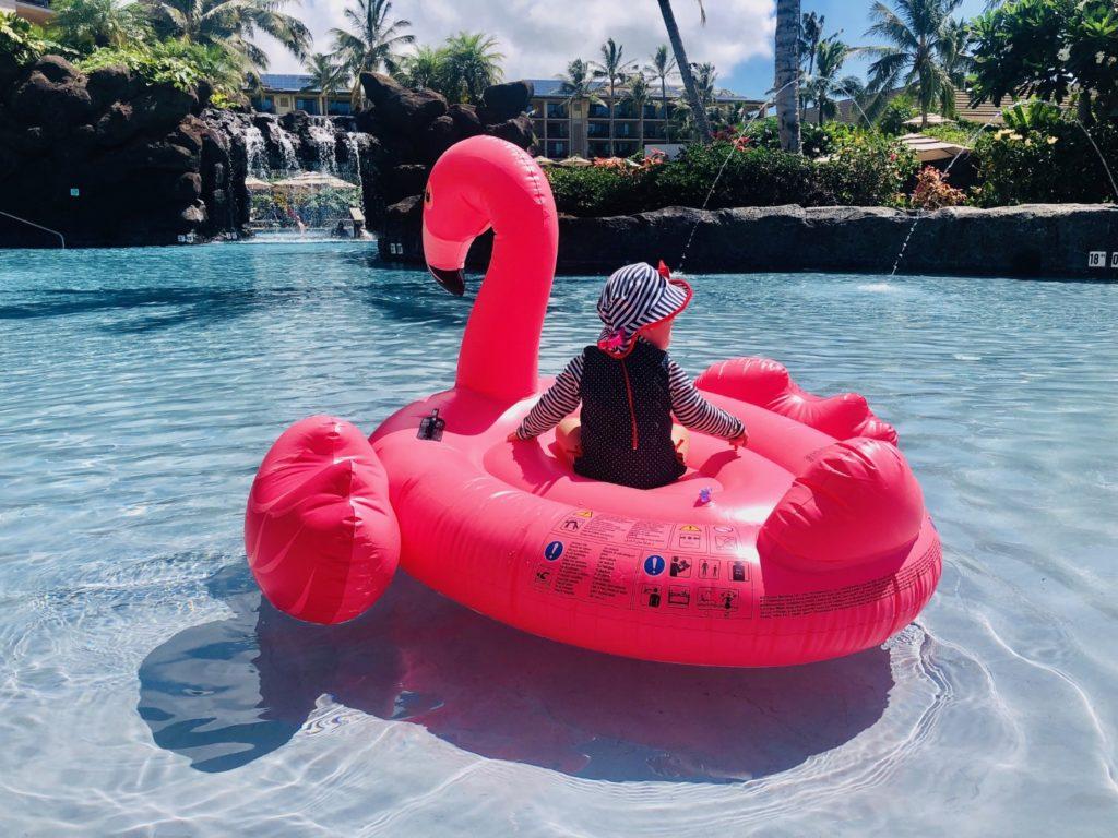 Vic auf dem Flamingo
