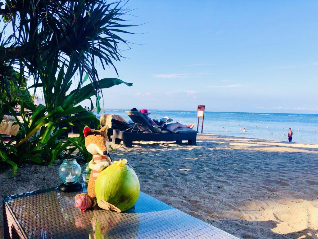 Sigi mit einer Kokosnuss im Laguna Luxury Resort & Spa - Autograph Collection