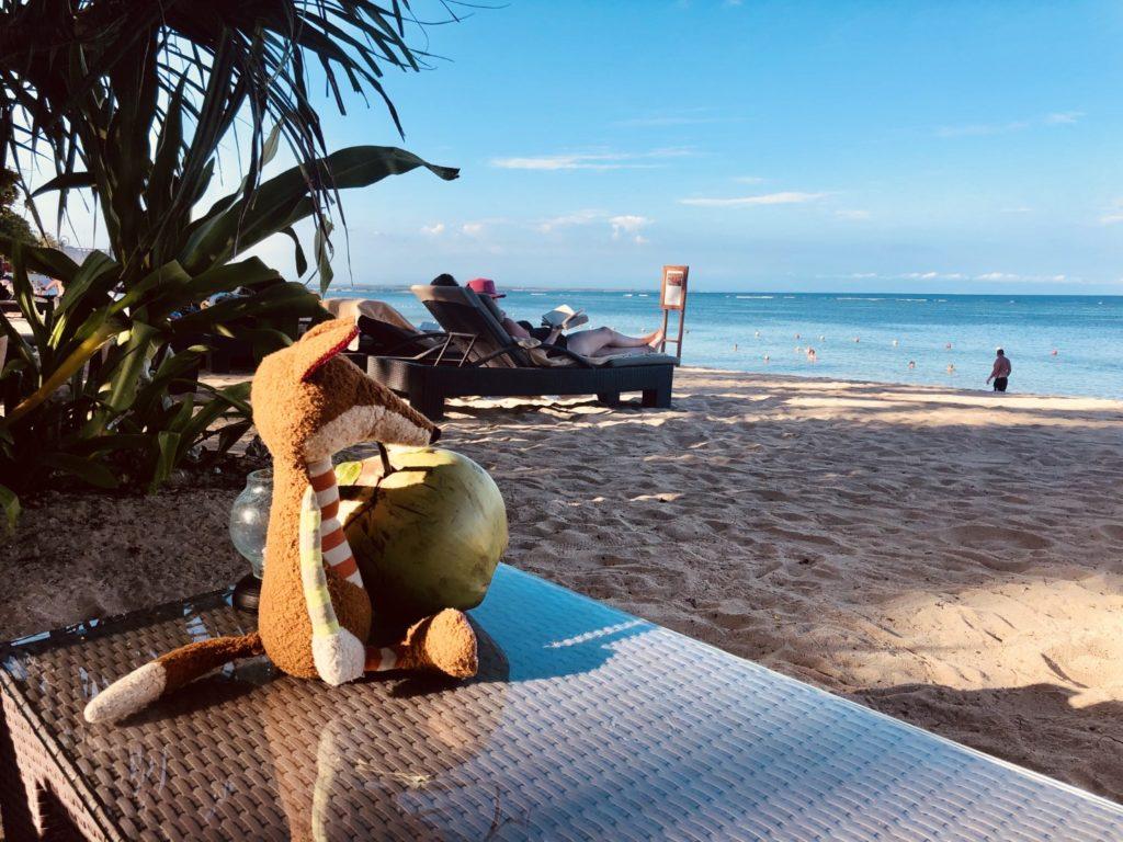 Sigi genießt eine Kokosnuss am Strand. Die werden frisch gemacht und gebracht.