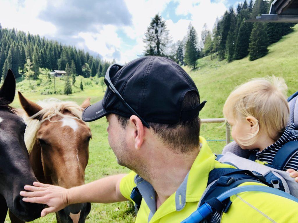 Papa streichelt die Pferde für mich